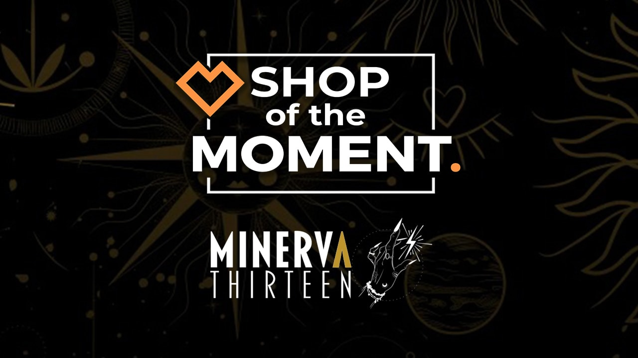 Shop of the Moment: Minerva Thirteen